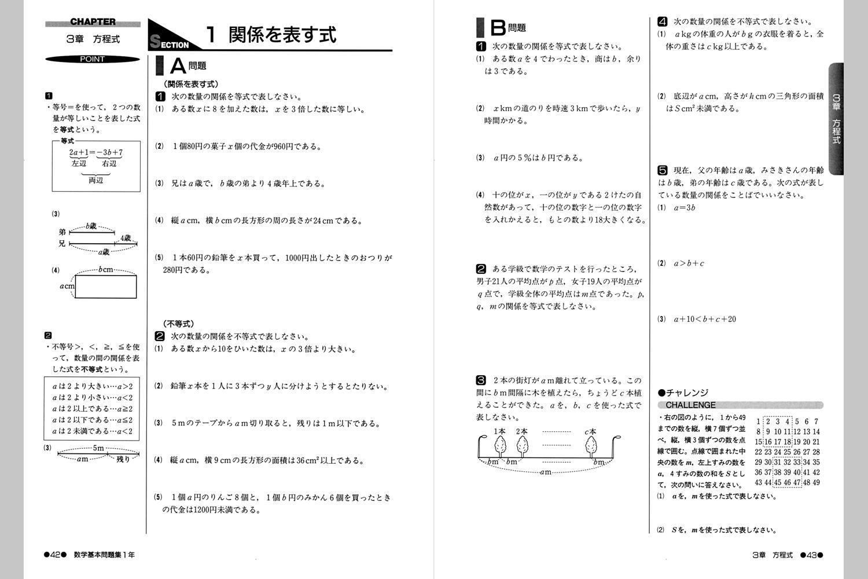 基本的な問題を扱った書き込み ... : 小学校 国語 ドリル : 国語